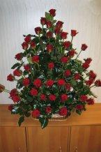 Růže koš 50